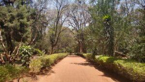Nairobi Arboretum Gardens