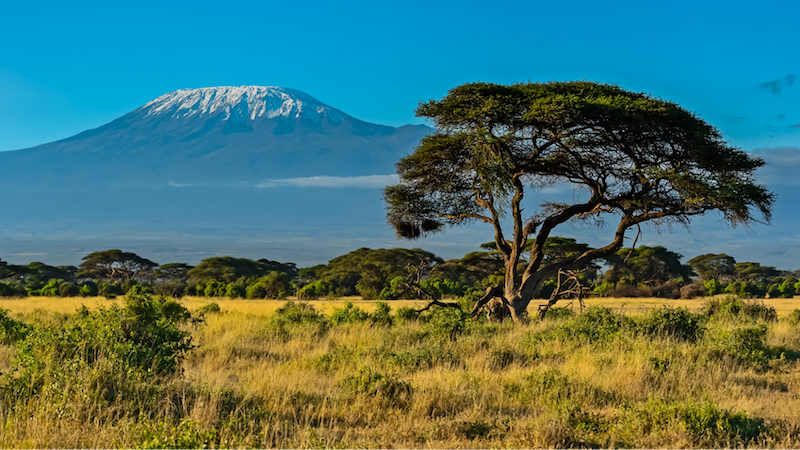 Kora National Park in Kenya